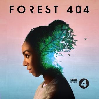Forest 404 podcast artwork