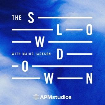 The Slowdown podcast artwork
