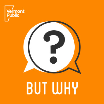 But Why: A Podcast for Curious Kids podcast artwork