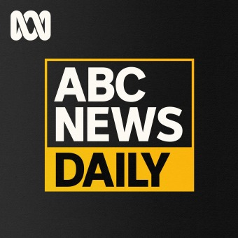 The Signal podcast artwork