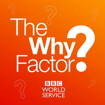 The Why Factor podcast artwork