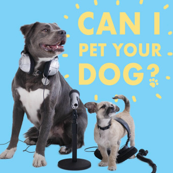 Can I Pet Your Dog? podcast artwork