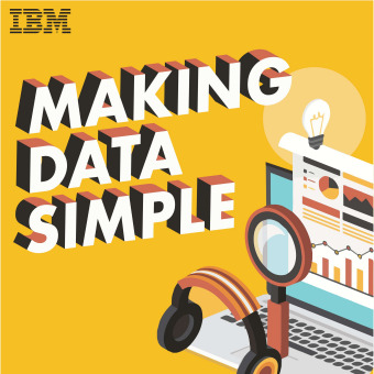 Making Data Simple podcast artwork