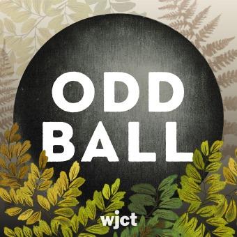 Odd Ball podcast artwork