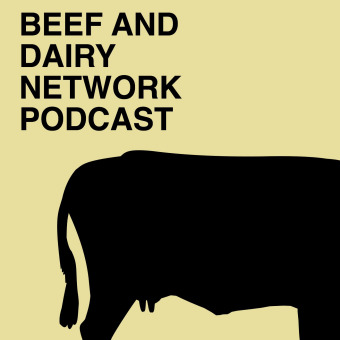 Beef And Dairy Network podcast artwork