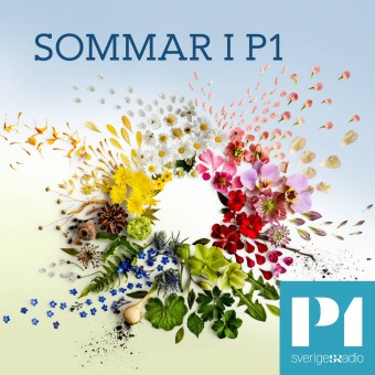 Sommar & Vinter i P1 podcast artwork