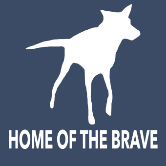 Home of the Brave podcast artwork