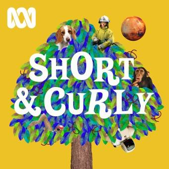 Short & Curly podcast artwork