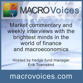 Macro Voices podcast artwork
