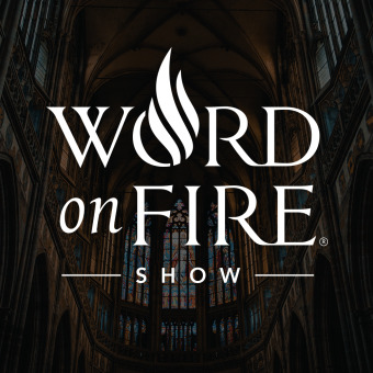 The Word on Fire Show - Catholic Faith and Culture podcast artwork
